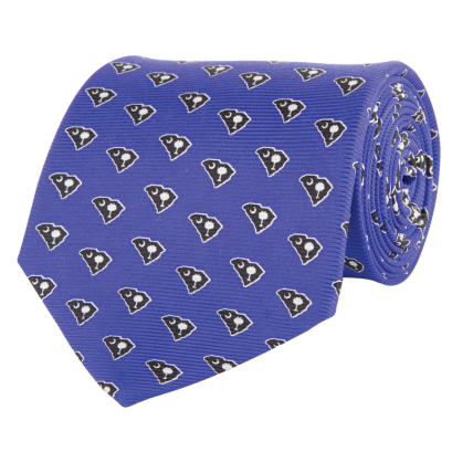 SC Traditional Blue Tie